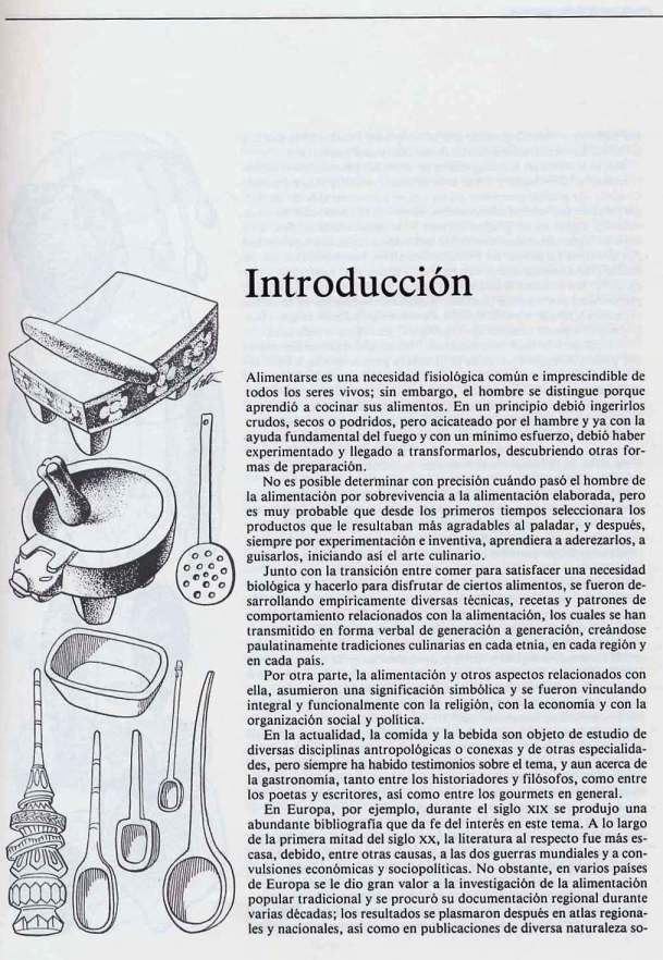 FERNANDO ANTONIO RUANO FAXAS. IMAGOLOGÍA. COCINA MEXICANA, PLATOS MEXICANOS, GASTRONOMÍA MEXICANA, MEXICAN GASTRONOMY, МЕКСИКАНСКАЯ КУЛИНАРИЯ, MEXIKANISCHE GASTRONOMIE, GASTRONOMIE MEXICAINE 13