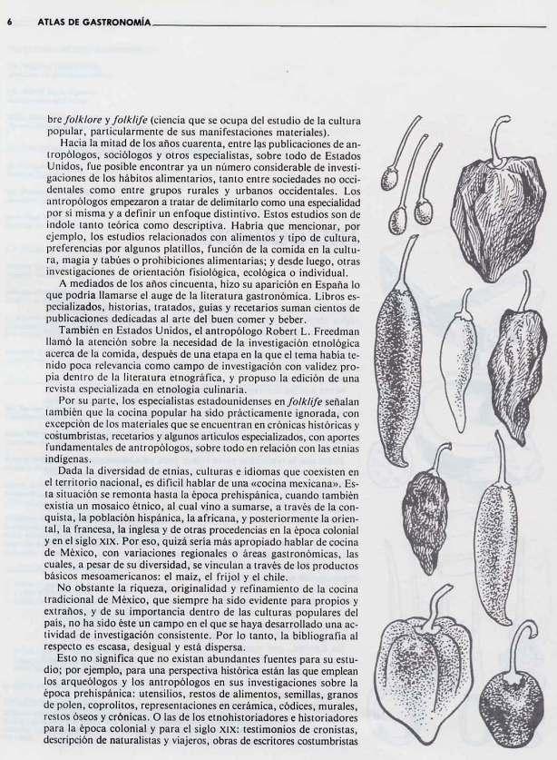 FERNANDO ANTONIO RUANO FAXAS. IMAGOLOGÍA. COCINA MEXICANA, PLATOS MEXICANOS, GASTRONOMÍA MEXICANA, MEXICAN GASTRONOMY, МЕКСИКАНСКАЯ КУЛИНАРИЯ, MEXIKANISCHE GASTRONOMIE, GASTRONOMIE MEXICAINE 14