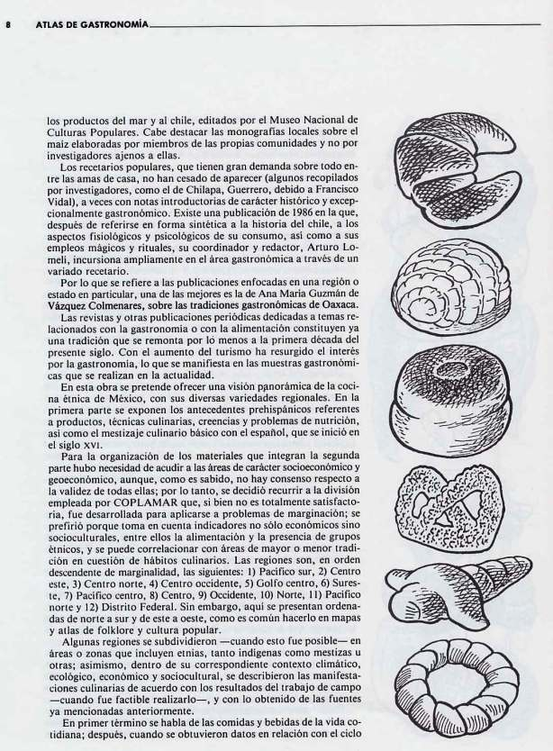 FERNANDO ANTONIO RUANO FAXAS. IMAGOLOGÍA. COCINA MEXICANA, PLATOS MEXICANOS, GASTRONOMÍA MEXICANA, MEXICAN GASTRONOMY, МЕКСИКАНСКАЯ КУЛИНАРИЯ, MEXIKANISCHE GASTRONOMIE, GASTRONOMIE MEXICAINE 16