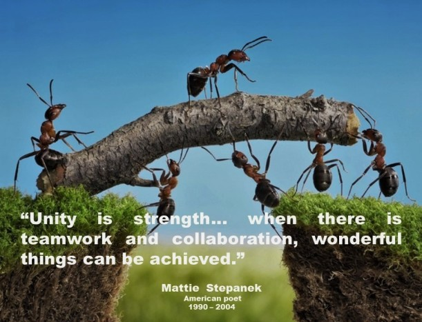 LEADERSHIP, MANAGEMENT. Matthew Joseph Thaddeus Stepanek. Unity is strength... when there is teamwork and collaboration, wonderful things can be achieved