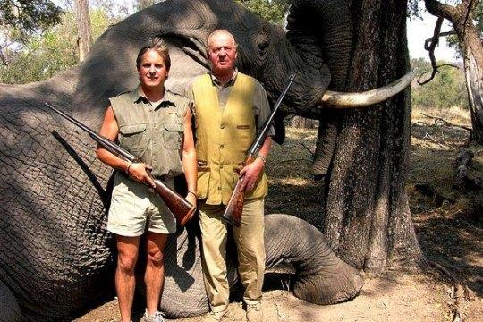 Y para qué han servido este tarado y delincuente rey de España Juan Carlos y su familia. Que le pregunten a los españoles de adentro y a los españoles de afuera