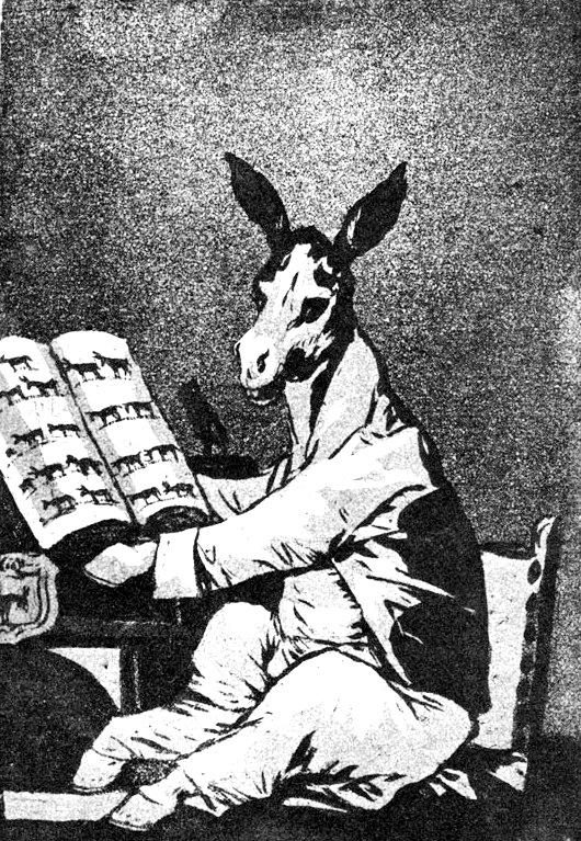 """«¿Y no tenían otro tipo de animal """"menos burro"""" para poner como presidente? ¿¡Tenía que ser un burro, y de ese tamaño!?»"""