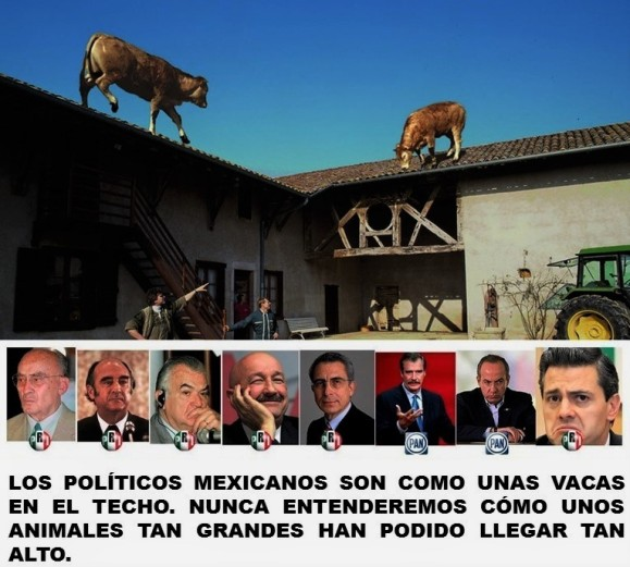 MEXICO, ELECCIONES. LOS POLÍTICOS MEXICANOS SON COMO UNAS VACAS EN EL TECHO. NUNCA ENTENDEREMOS CÓMO UNOS ANIMALES TAN GRANDES HAN PODIDO LLEGAR TAN ALTO.